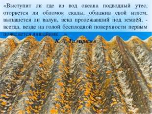 «Выступит ли где из вод океана подводный утес, оторвется ли обломок скалы, о