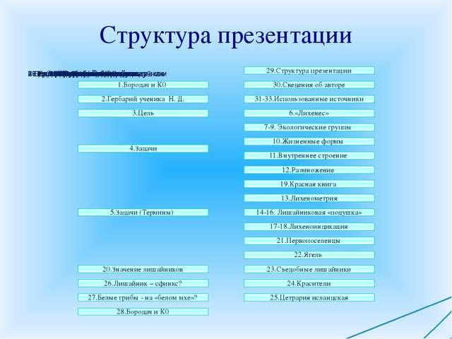Структура презентации 1.Бородач и К0 29.Структура презентации 30.Сведения о...