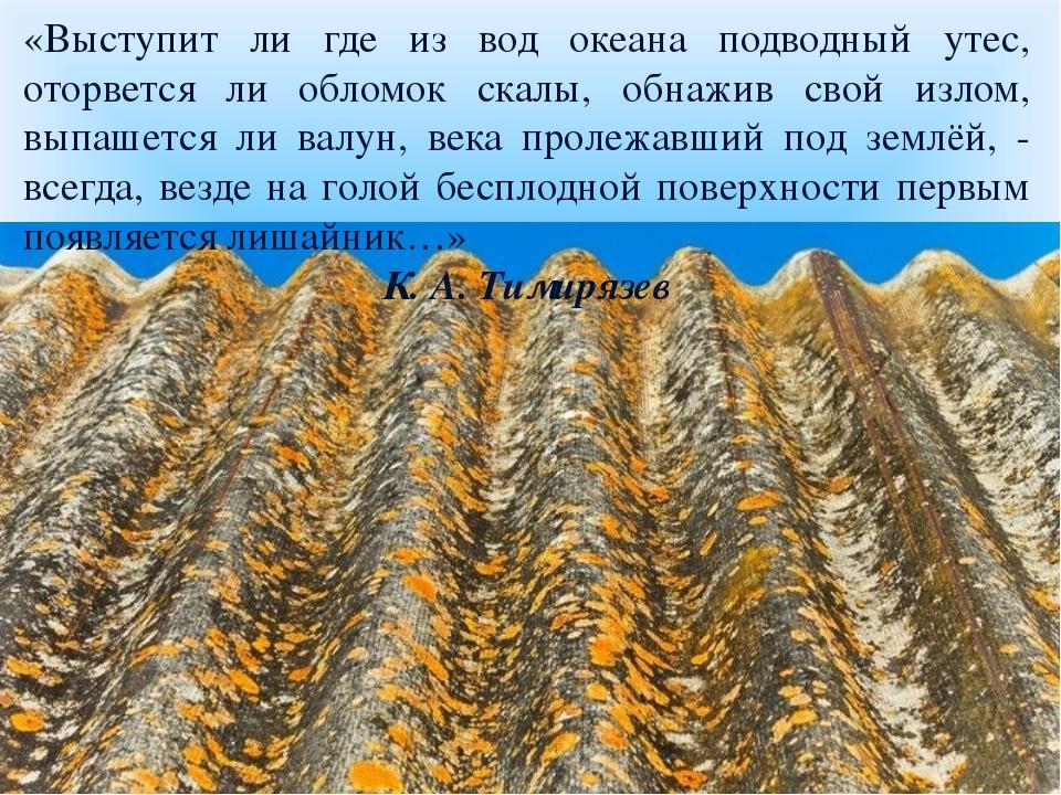 «Выступит ли где из вод океана подводный утес, оторвется ли обломок скалы, о...
