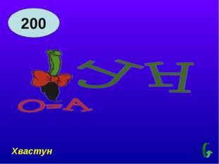 200 Хвастун