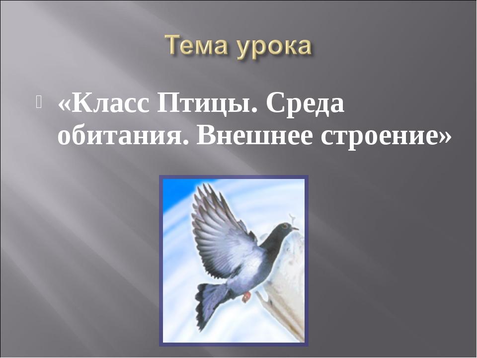 «Класс Птицы. Среда обитания. Внешнее строение»