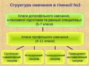Структура навчання в гімназії №3 Класи допрофільного навчання, інтенсивної пі