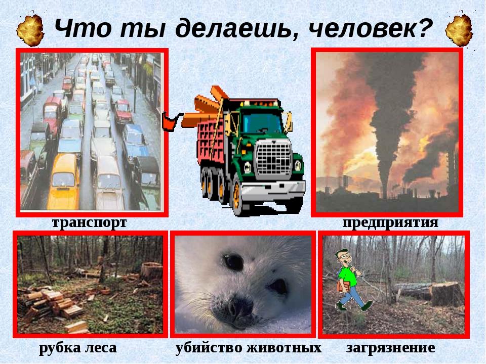 Что ты делаешь, человек? транспорт предприятия рубка леса загрязнение убийств...