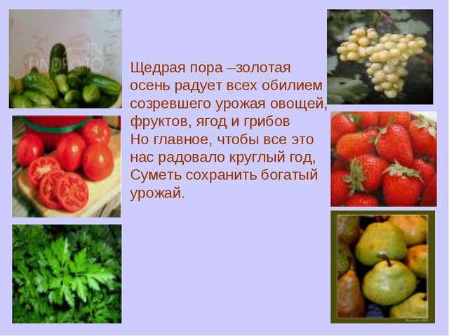 Щедрая пора –золотая осень радует всех обилием созревшего урожая овощей, фрук...