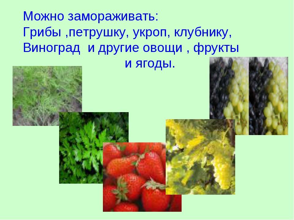 Можно замораживать: Грибы ,петрушку, укроп, клубнику, Виноград и другие овощи...