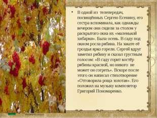 В одной из телепередач, посвящённых Сергею Есенину, его сестра вспоминала, ка