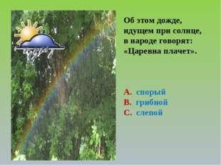 Об этом дожде, идущем при солнце, в народе говорят: «Царевна плачет». А. спор