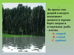 Во время этих дождей в воздухе попахивает дымком и хорошо берёт хитрая и ост