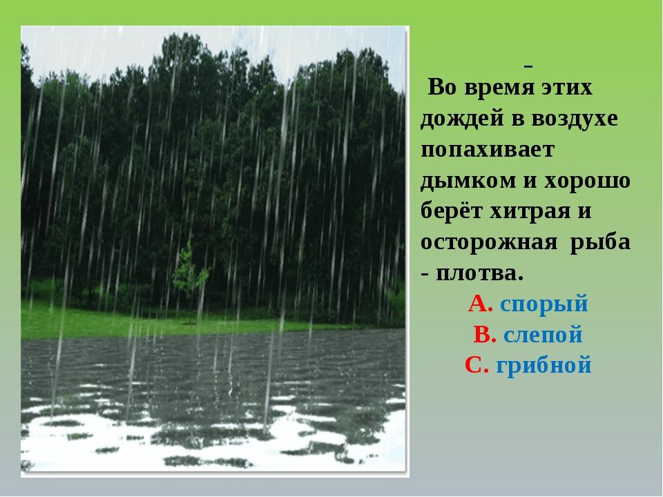 Во время этих дождей в воздухе попахивает дымком и хорошо берёт хитрая и ост...