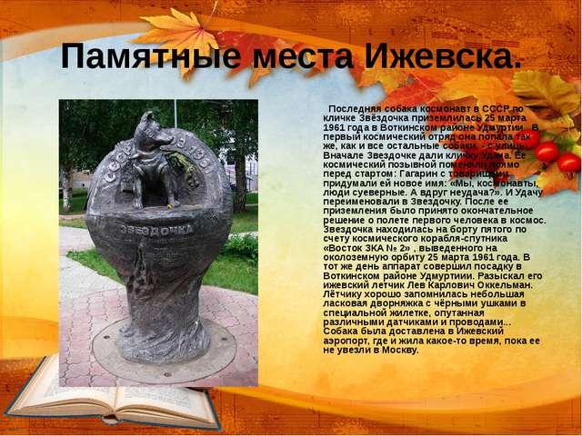 Памятные места Ижевска. Последняя собака космонавт в СССР по кличке Звёздочка...