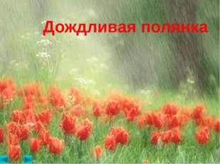 Дождливая полянка