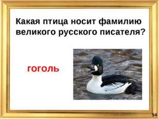 Какая птица носит фамилию великого русского писателя? * гоголь