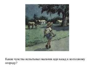 Какие чувства испытывал мальчик идя назад к колхозному огороду?