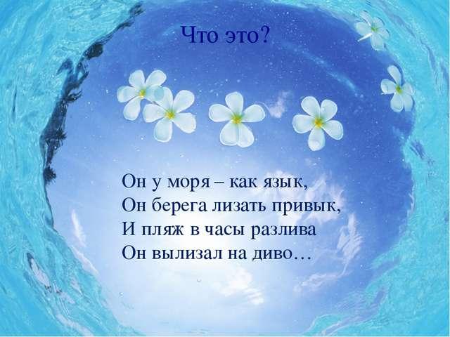 Что это? Он у моря – как язык, Он берега лизать привык, И пляж в часы разлива...