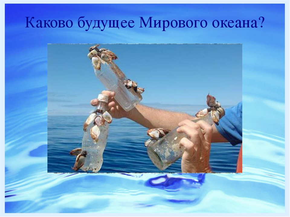Каково будущее Мирового океана? http://www.dailygalaxy.com/.a/6a00d8341bf7f75...
