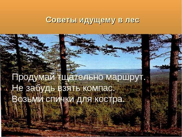 Советы идущему в лес Продумай тщательно маршрут. Не забудь взять компас. Возь...