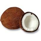 0617-01coconut-500x500