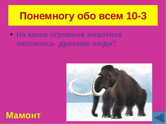 Чей портрет? 20-6 Георгий Константинович Жуков