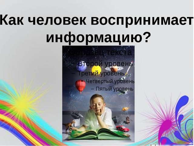 Как человек воспринимает информацию?