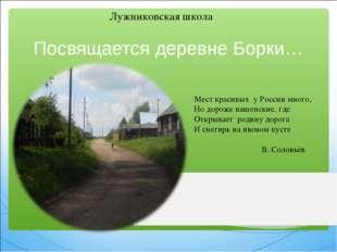 Посвящается деревне Борки…  Лужниковская школа Мест красивых у России