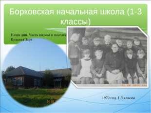 Борковская начальная школа (1-3 классы) 1970 год. 1-3 классы Наши дни. Часть