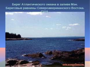 Берег Атлантического океана в заливе Мэн. Береговые равнины Североамериканско