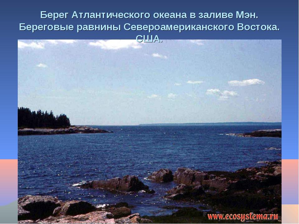 Берег Атлантического океана в заливе Мэн. Береговые равнины Североамериканско...