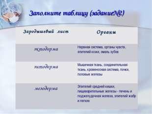Заполните таблицу (задание№2) Зародышевый лист Органы эктодермаНервная сист