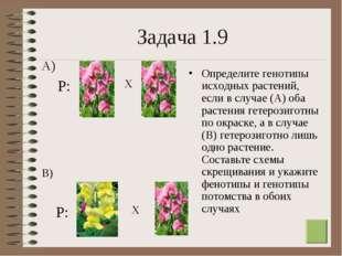 * Задача 1.9 Определите генотипы исходных растений, если в случае (А) оба рас