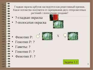* Гладкая окраска арбузов наследуется как рецессивный признак. Какое потомств