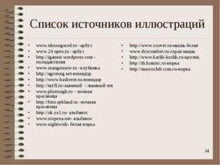 * Список источников иллюстраций www.idrusogorod.ru –арбуз www.24 open.ru –арб