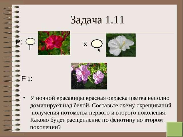 * Задача 1.11 У ночной красавицы красная окраска цветка неполно доминирует на...