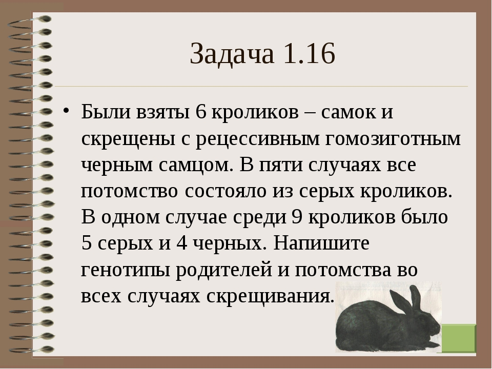 * Задача 1.16 Были взяты 6 кроликов – самок и скрещены с рецессивным гомозиго...