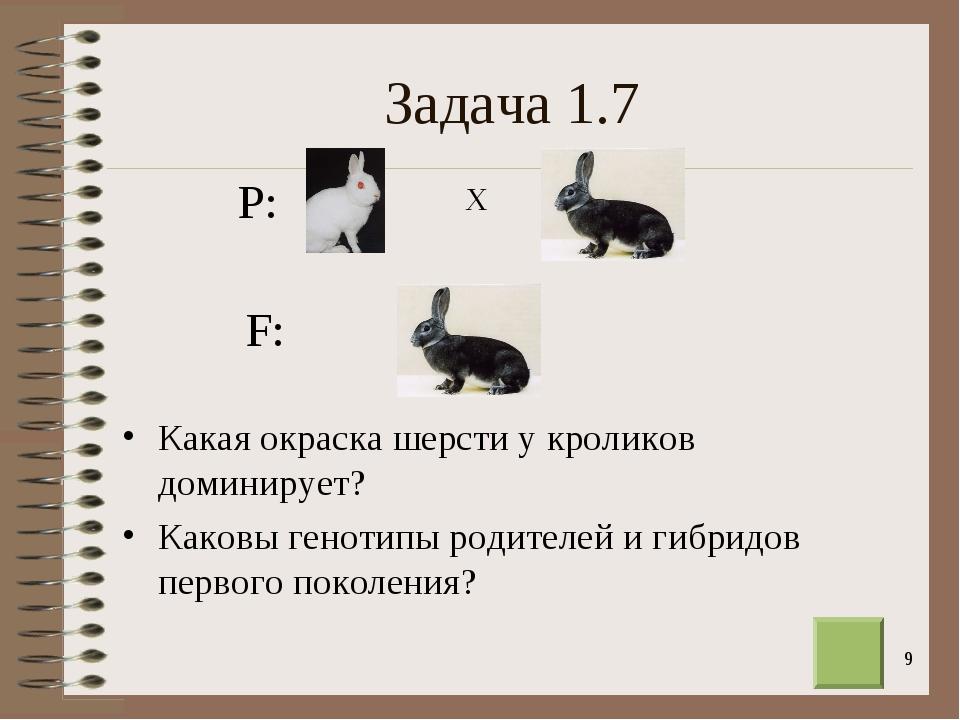 * Задача 1.7 Какая окраска шерсти у кроликов доминирует? Каковы генотипы роди...