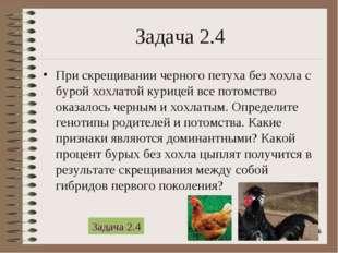 * Задача 2.4 При скрещивании черного петуха без хохла с бурой хохлатой курице