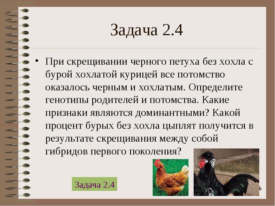 * Задача 2.4 При скрещивании черного петуха без хохла с бурой хохлатой курице...