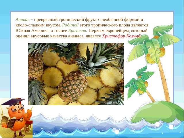 Ананас – прекрасный тропический фрукт с необычной формой и кисло-сладким вкус...
