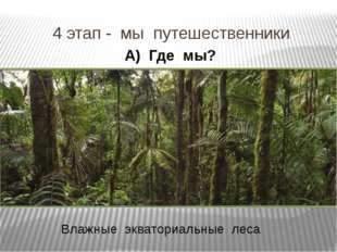 4 этап - мы путешественники А) Где мы? Влажные экваториальные леса