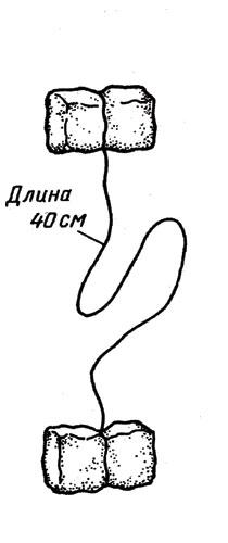 hello_html_m64712c84.jpg