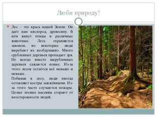 Люби природу! Лес – это краса нашей Земли. Он даёт нам кислород, древесину.