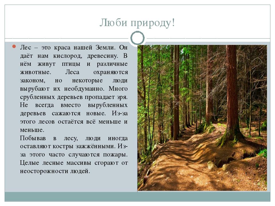 Люби природу! Лес – это краса нашей Земли. Он даёт нам кислород, древесину....