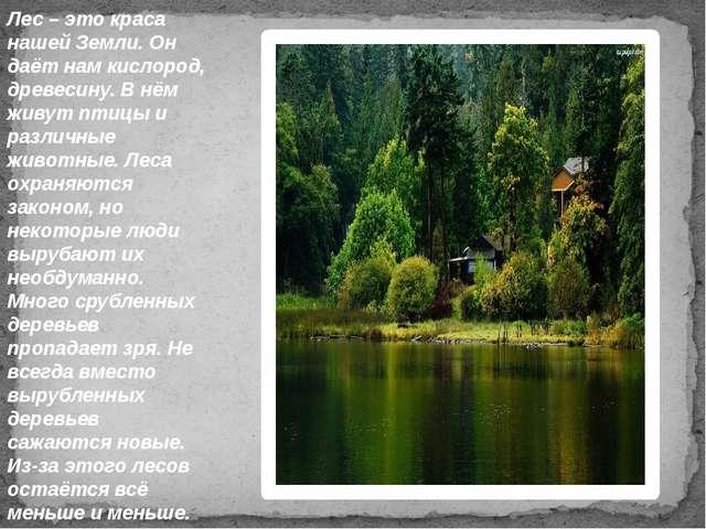 Лес – это краса нашей Земли. Он даёт нам кислород, древесину. В нём живут пти...