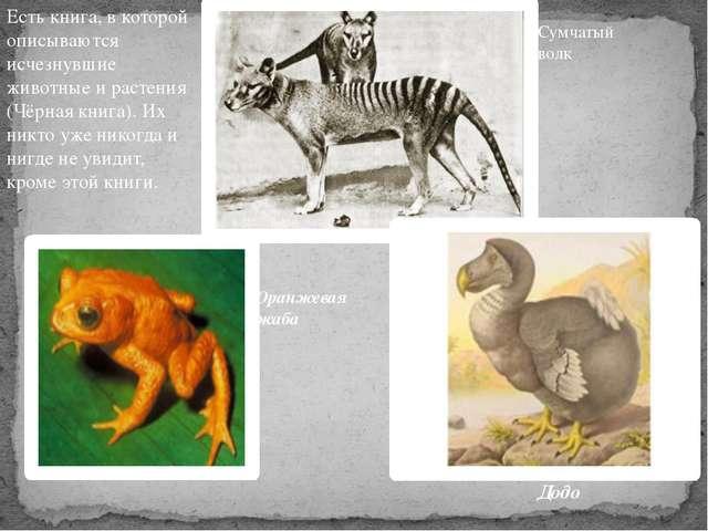 Есть книга, в которой описываются исчезнувшие животные и растения (Чёрная кни...
