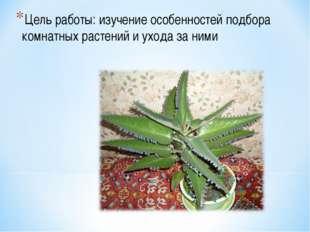 Цель работы: изучение особенностей подбора комнатных растений и ухода за ними