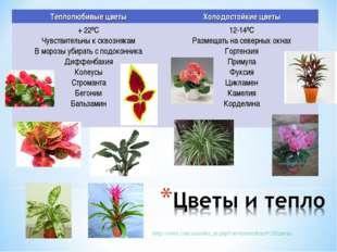 http://cvetu.com.ua/index_ru.php?cat=interes&ind=205цветы Теплолюбивые цветы