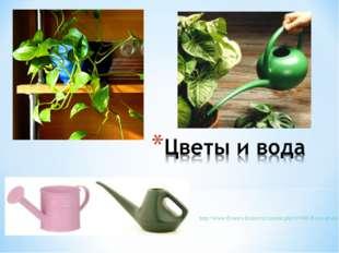 http://www.flowers-house.ru/content.php?r=666-Все-о-воде-для-полива-комнатных