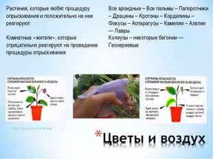 http://iplants.ru/vrezim.htm Растения, которые любят процедуру опрыскивания и
