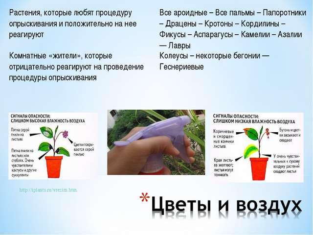 http://iplants.ru/vrezim.htm Растения, которые любят процедуру опрыскивания и...