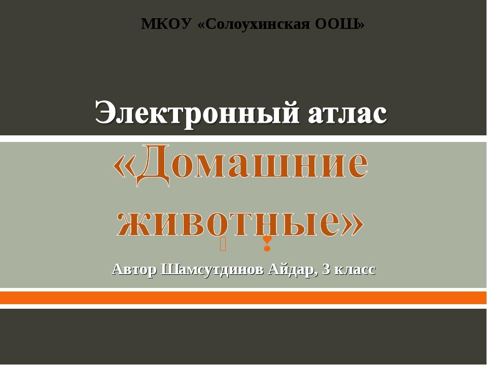 Автор Шамсутдинов Айдар, 3 класс МКОУ «Солоухинская ООШ»  