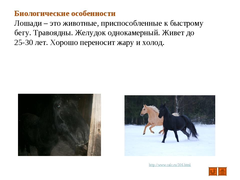 Биологические особенности Лошади – это животные, приспособленные к быстрому б...